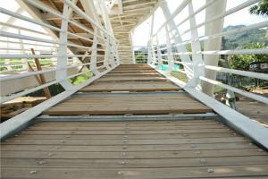 puentes18